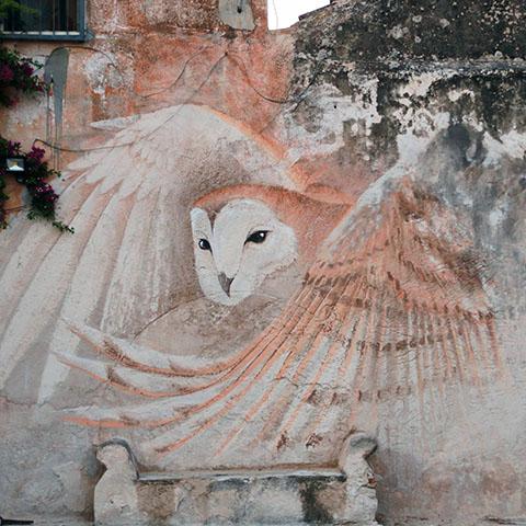 05 Trapani murales barbagianni (1)
